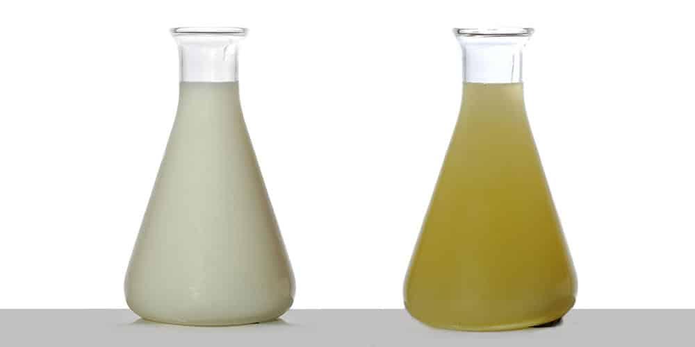 Des nouveautés dans les huiles alimentaires bio