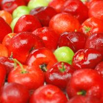La poudre d'acérola bio, le superfruit gagnant… sous conditions