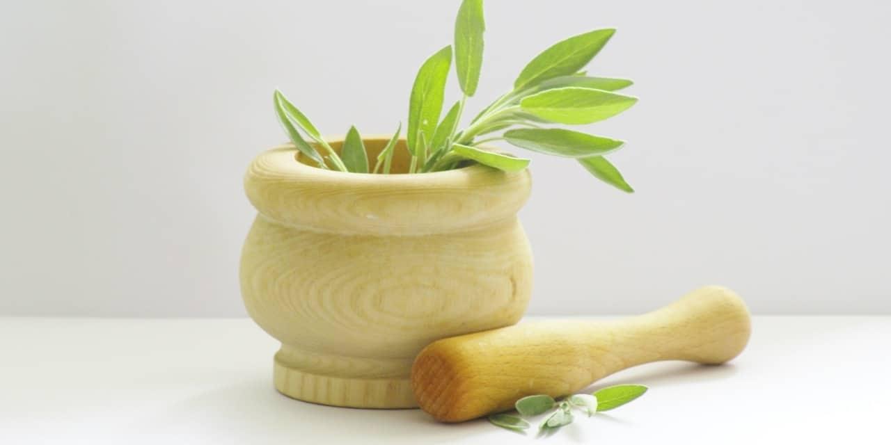 II- Les nouvelles exigences pour l'usage de plantes dans les compléments alimentaires