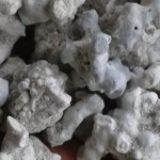 Deux sources de calcium marin utilisables en bio