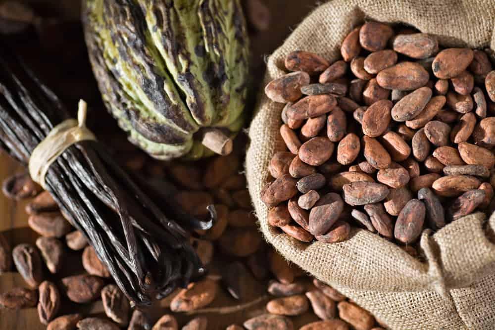Plantex renforce sa gamme d'extraits végétaux bio « notes brunes »