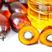 L'huile de palme biologique est-elle à réhabiliter ?