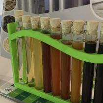 Sipal Partners, expert historique des ingrédients naturellement sucrants bio