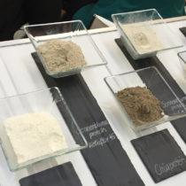Protéines du futur, ingrédients fonctionnels, inclusions originales… la face B de Biofach