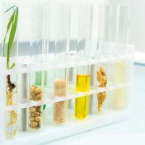 Triballat Ingrédients sème durablement les graines de l'alimentation de demain