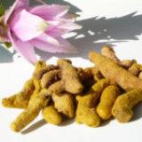 Le curcuma, un ingrédient santé naturel au large spectre pour les produits bio