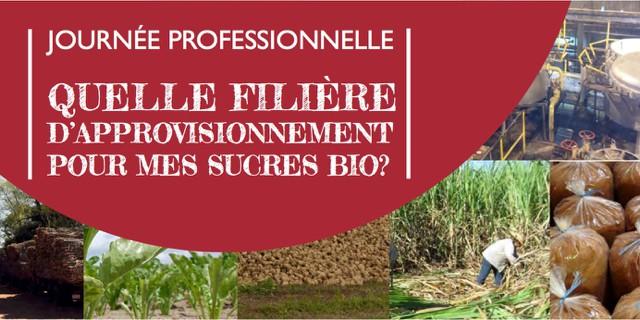 Bio Partenaire organise une journée professionnelle dédiée aux approvisionnements en sucres bio
