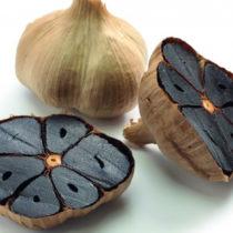 Plantex poursuit son ancrage dans le bio avec ses extraits d'ail noir