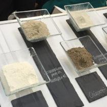 Protéines végétales biologiques : les fournisseurs explorent toutes les sources