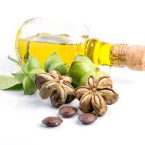 L'huile vierge biologique Inca Inchi® disponible en Europe