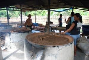 unités de pré-process du guarana en amazonie