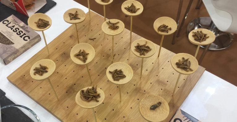 Les insectes, une filière qui avance malgré les obstacles