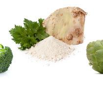 Adetis-Prochimia étoffe sa gamme avec ses poudres de légumes et d'algues origine Bretagne !