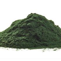 Lancement d'une nouvelle microalgue Chlorella certifiée bio au Vitafoods