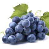 Activ'Inside étend son offre d'extraits de raisin biologiques