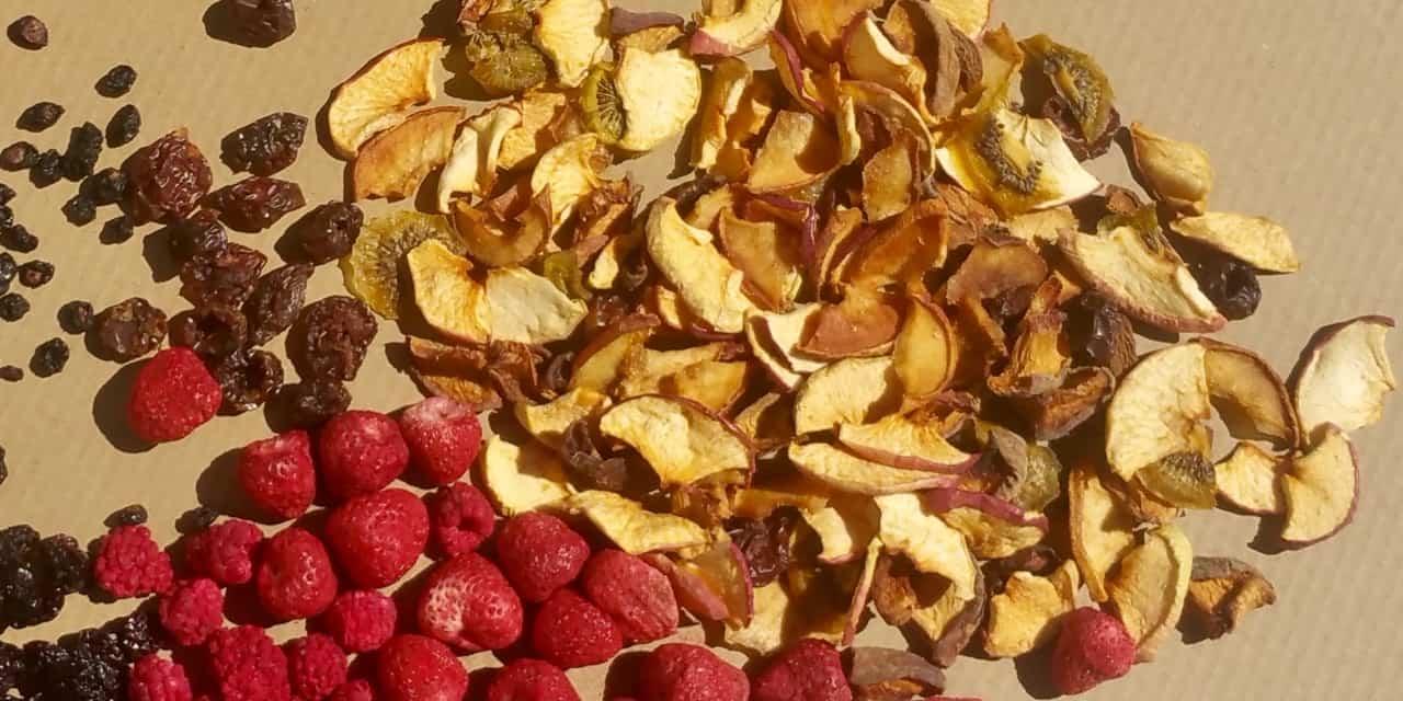Fruits et légumes déshydratés : une qualité crue proposée par Biercors