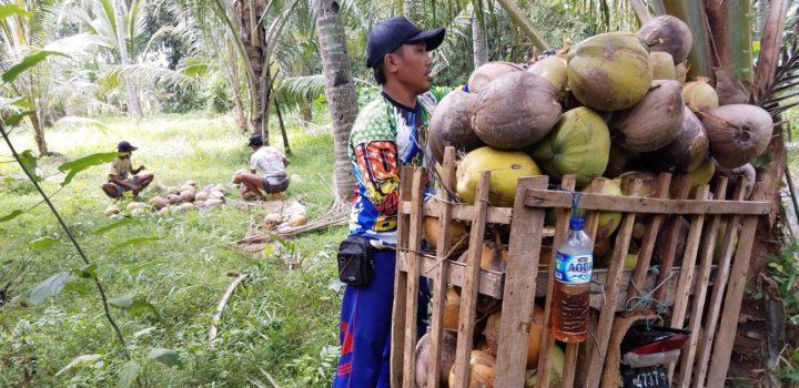 Bonabio mise sur les ingrédients à base de coco bio pour Natexpo 2018
