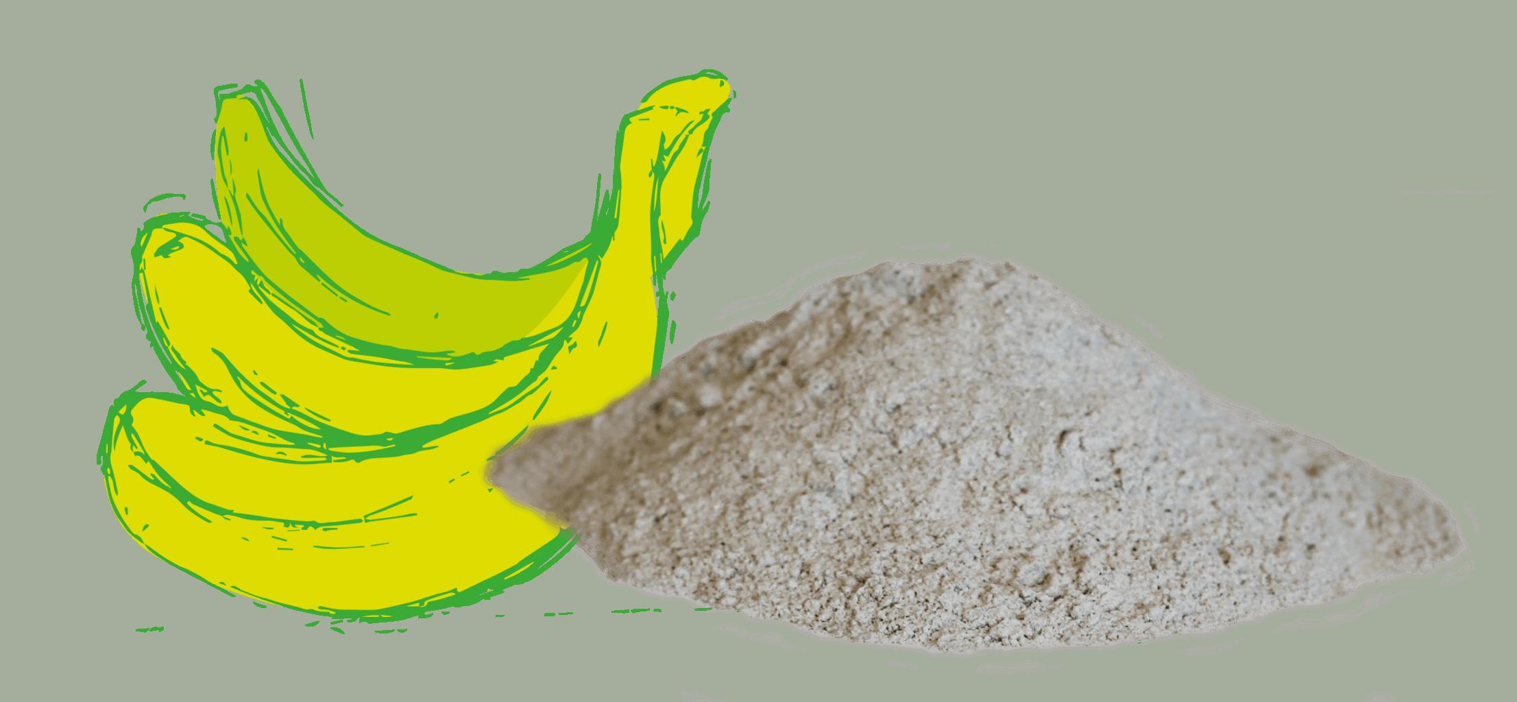 Farine de Bananes vertes, une petite nouvelle parmi les farines sans gluten