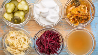 Tendance : la fermentation revient en force et inspire la bio