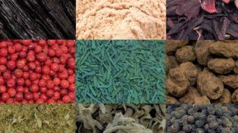 Happy Ingredients : un nouveau fournisseur pour les ingrédients naturels