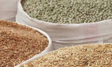Naissance d'Ebro Ingredients