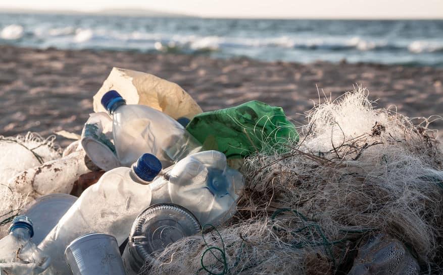 Le défi des emballages est relevé par le secteur bio