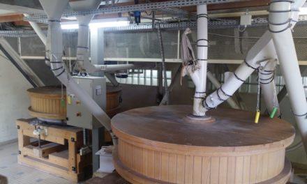 Du champ au moulin bio, le Moulin de Moisdon-La-Rivière mise sur la gestion des risques