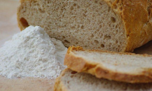 Comment évaluer un procédé de transformation alimentaire biologique ? Étude de cas sur le pain