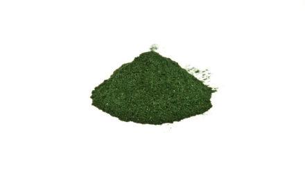 Seanova introduit la micro-algue Klamath biologique en Europe
