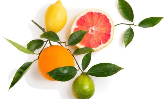 Fruitofood lance une gamme de PAI de fruits Bio origine France