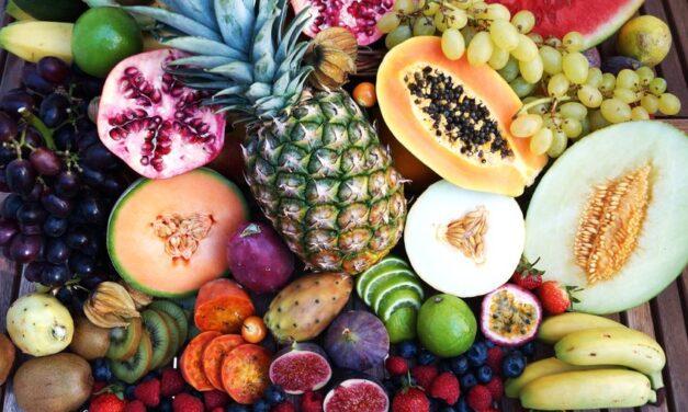 Importations de produits alimentaires bio en UE : les évolutions clés de 2019