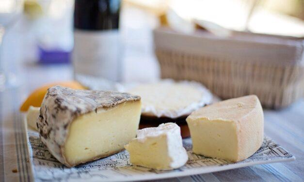 Les fromages bio entrent dans la danse