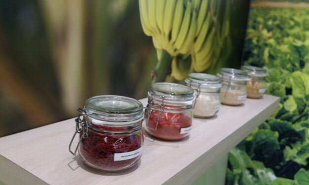 Biofach eSpecial : une autre façon de sourcer les ingrédients bio les plus innovants