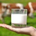 La filière lait biologique française face aux défis du changement d'échelle