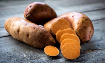 Une gamme inédite de farines de fruits et légumes bio chez ESENCO