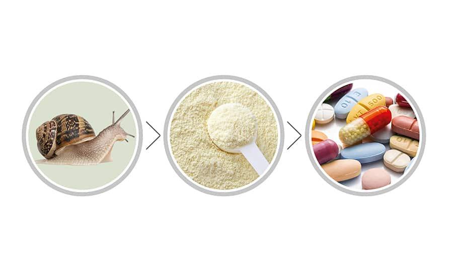 HPE Ingredients passe au bio pour ses extraits d'escargots !