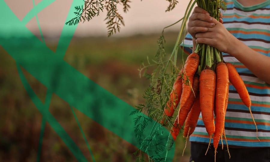 Organic Food Conference 2021 : un format hybride pour l'évènement de l'agroalimentaire bio