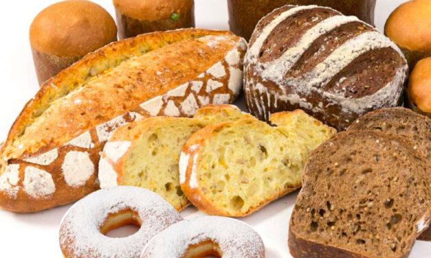 Une offre de solutions bio pour la boulangerie-viennoiserie-pâtisserie-snacking
