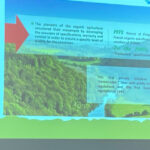Congrès Mondial de la Bio 2021 : Chaîne de valeurs et valeur augmentée de la Bio