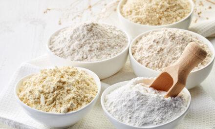 VP Ingrédients renforce son positionnement en tant que fournisseur de solutions végétales